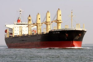 Bulk carrier - pic