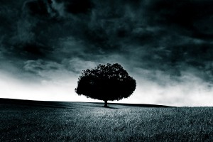 Storm (2)