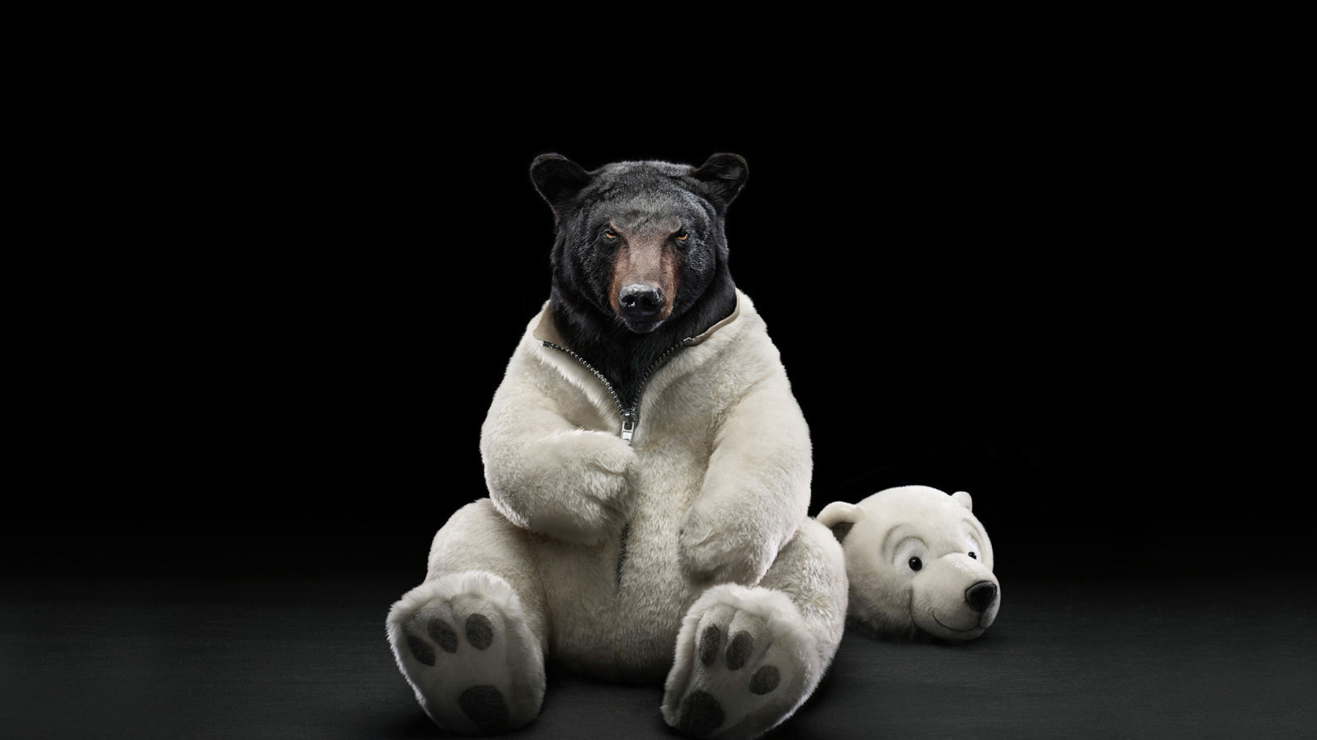 funny_bear_costume_white_polar_brown_2216_2560x1440