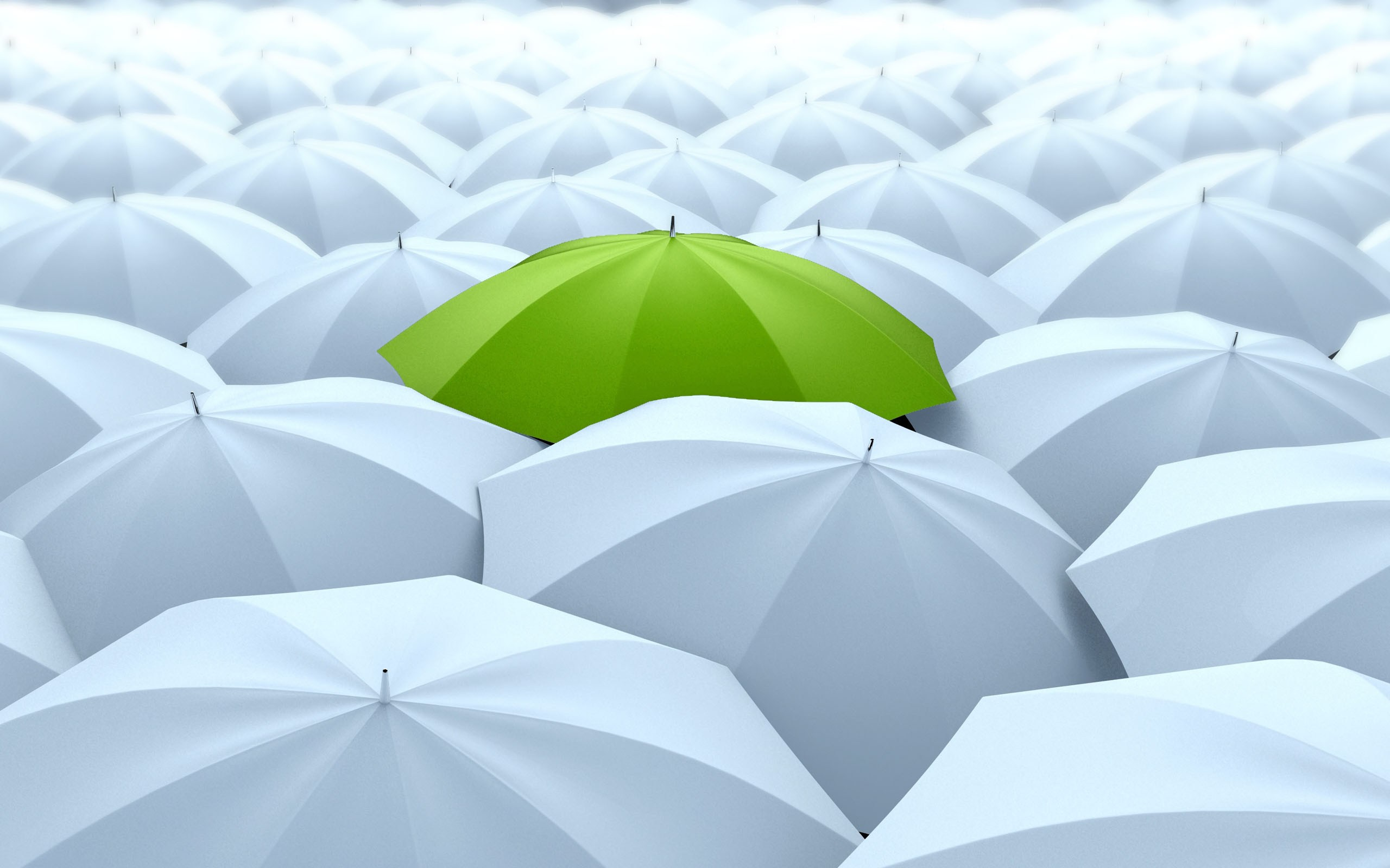 Many umbrellas. One green.
