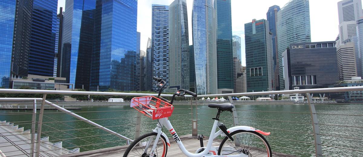 isoteam-sg-bike