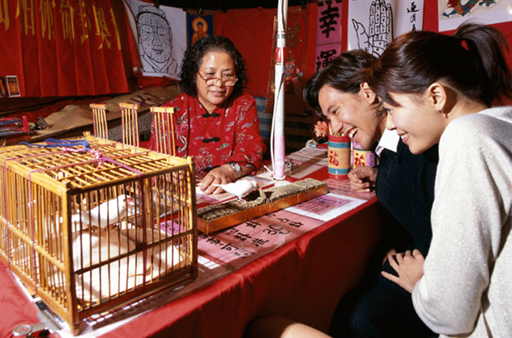 fortune-telling-by-bird