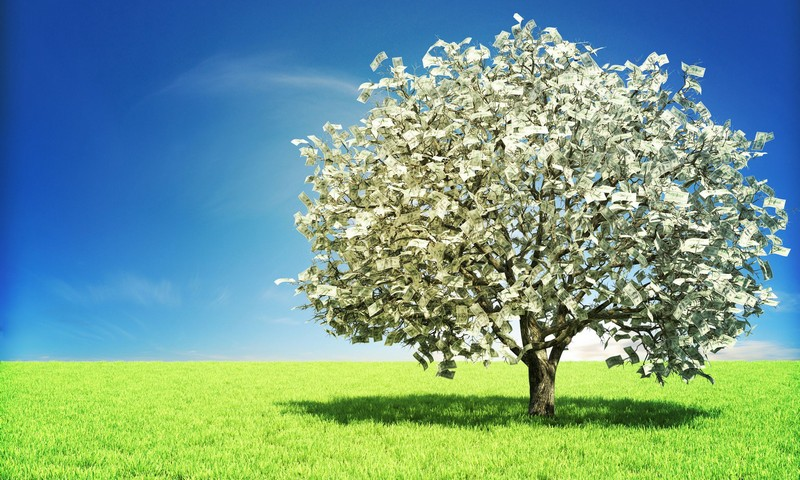 TheMoneyTree