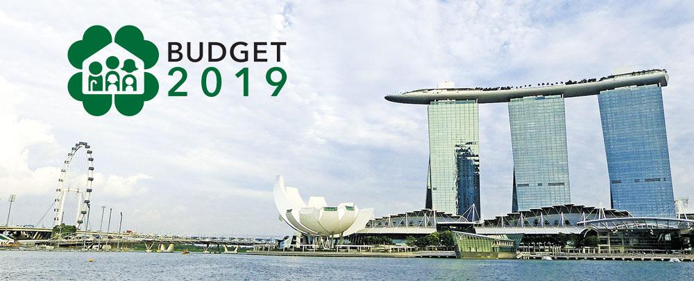 buget 2019 singapore